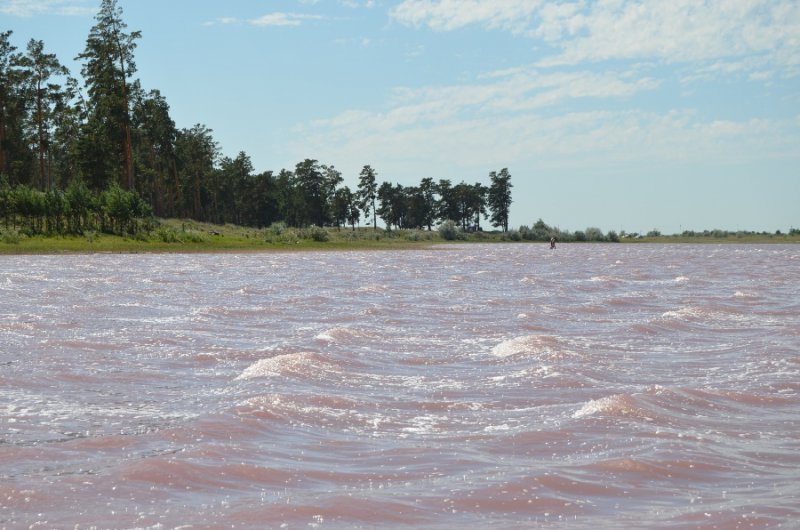 Вид на озеро розового цвета