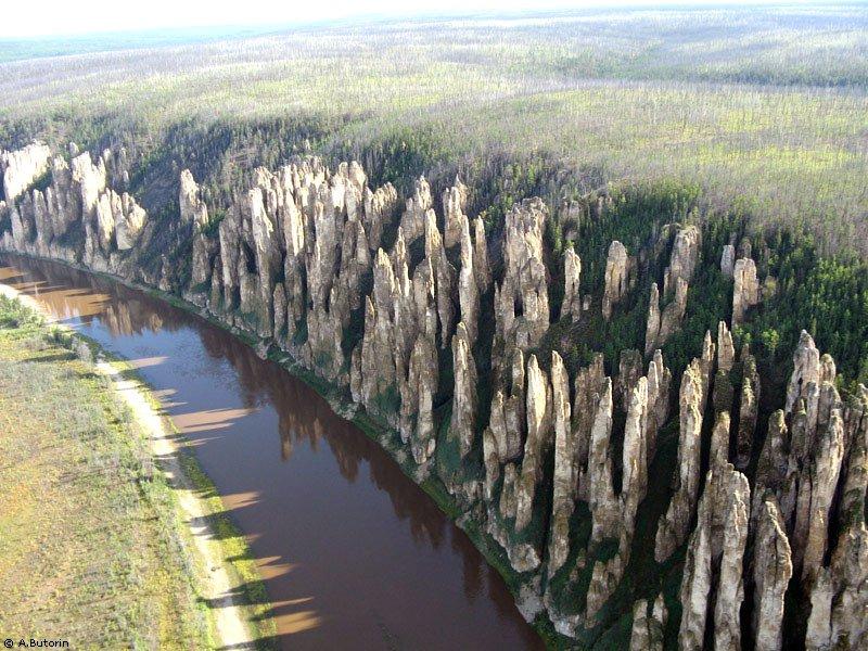 Каменный лес в Сибири на реке Лена - фото 7