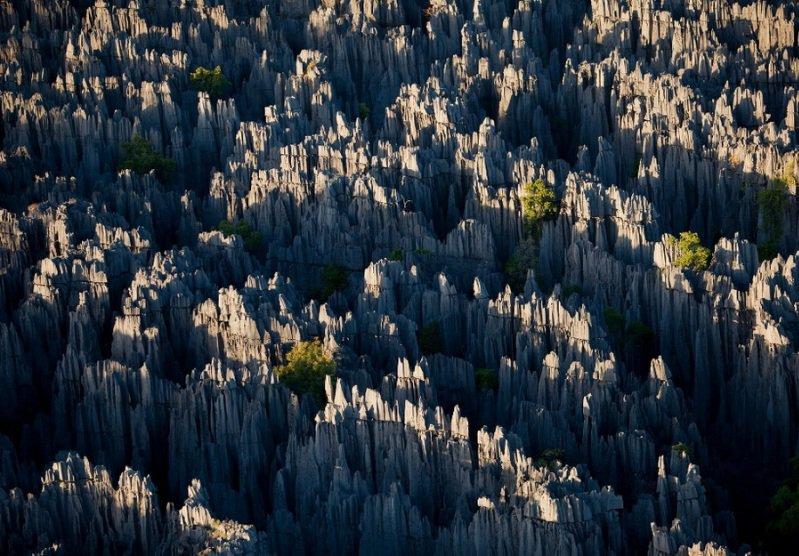 Вид с верху на каменный лес на Мадагаскаре - фото 14