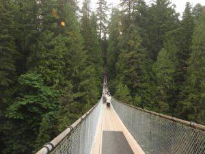 Длина моста - 70 метров