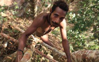 Племя каннибалов, живущих на деревьях