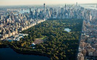 Оазис в мегаполисе — центральный парк Нью-Йорка