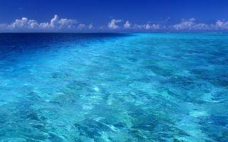 Почему границы морей не смешиваются
