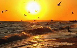 Где лучше отдыхать на Азовском море