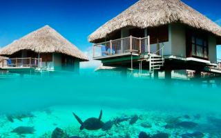 Самый дорогой, шикарный и далекий остров для отдыха