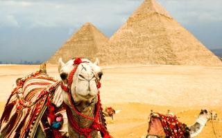 Новые запреты на курортах Египта