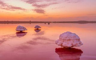 5 розовых озер, которые поражают красотой