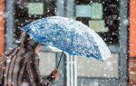 Правда ли, что в Москве пойдет снег на выходных