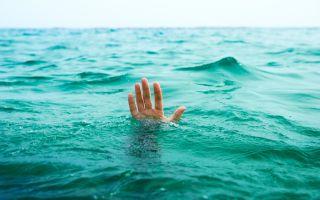 Из-за чего на побережье Австралии лучше никогда не купаться без колготок
