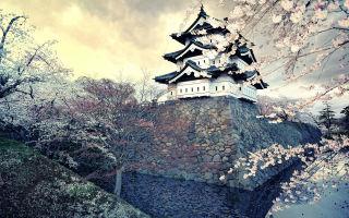 13 интересных фактов о жизни в Японии