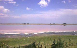 Целебное Малиновое озеро в Алтайском крае