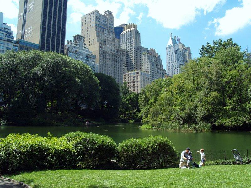 Отдыхающие жители Нью-Йорка в Центральном парке