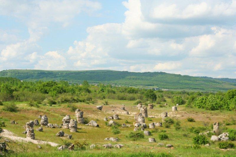Каменный лес в Болгарии - фото 1