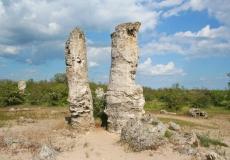 id-40-kamennyj-les-bolgaria-7