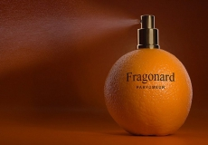 id-48-salon-fragonar-2