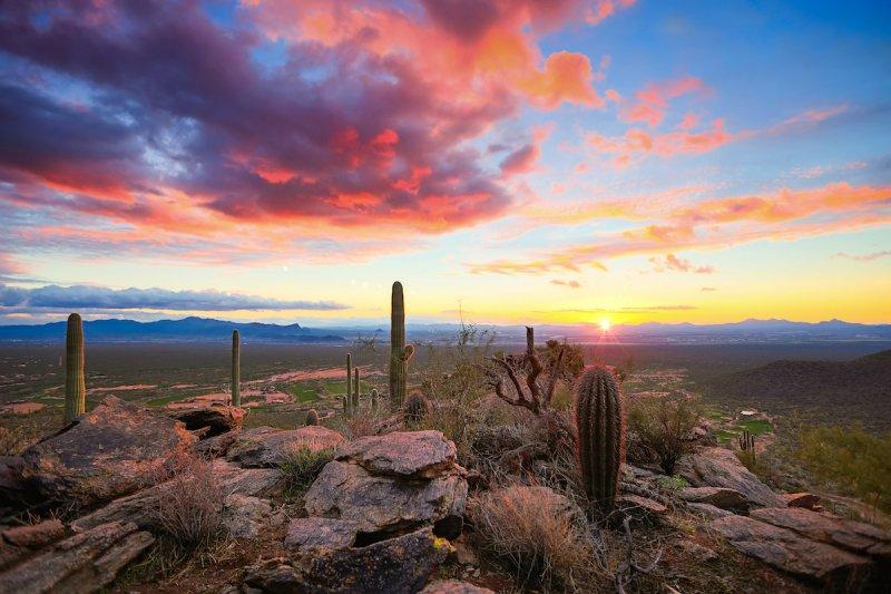 Закат в пустыне Сонора