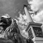 Колонна Нельсона и Лондонский лев