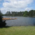Озеро Булонского леса