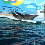 Дельфинарий Барселоны