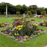 Цветы Люксембургского сада - 5