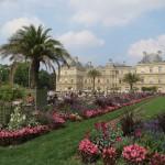 Цветы Люксембургского сада - 4
