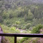 Вид из Денисовой пещеры на реку Ануй, Солонешенский район, Алтайский край (Чуваев Николай / ru.wikipedia)
