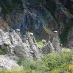Ряд Каменных грибов, Алтайский край
