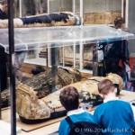 Египетская мумия в Британском музее