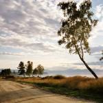 Дорога у озера