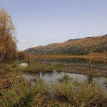Манжерокское озеро осенью
