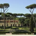 Необычайно красивые деревья, Вилла Боргезе