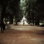 Скамейки парка Вилла Боргезе