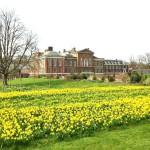 Сад перед королевски дворцом
