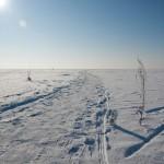Замерзшее Обское море