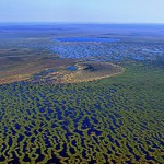 Васюганские болота вид с вертолета