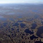 Васюганские болота вид с вертолета 3