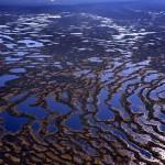 Васюганские болота вид с вертолета 2