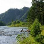 Спокойное течение реки Бия