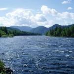 Река Бия, Алтай, Россия