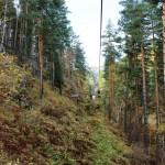 Канатная дорога на Церковку