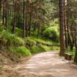 Пешеходные тропы - терренкуры Церковки