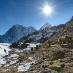 Возвращаясь из базового лагеря Эвереста