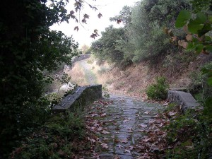 Пейзаж Афона