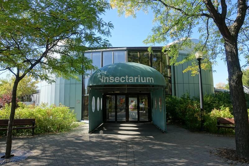 Вход в Инсектариум