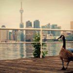 Популярная туристическая достопримечательность