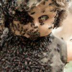 Жуки, поселившиеся в одной из кукол