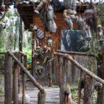 Домик на острове мертвых кукол в Мексике