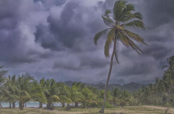 Доминикана Сезон для отдыха дождей ураганов таблица по месяцам Тонкости туризма питания Путевка цены отзывы туристов